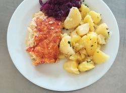 Zapečený květák s rajčaty a sýrem, vařený brambor